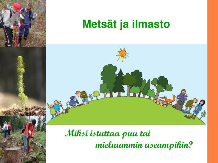 mets t ja ilmasto n.