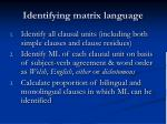 identifying matrix language