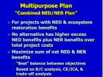 multipurpose plan combined ned ner plan