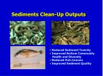 sediments clean up outputs