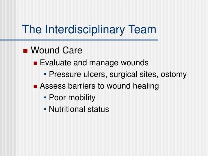 The Interdisciplinary Team
