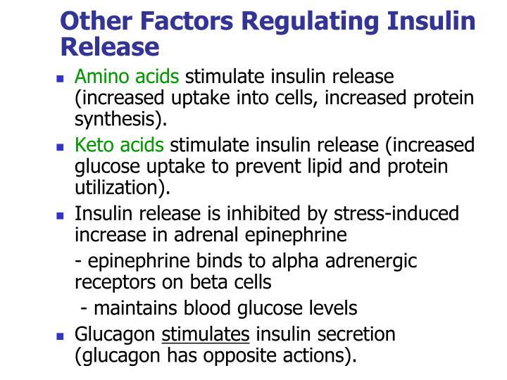 Other Factors Regulating Insulin Release