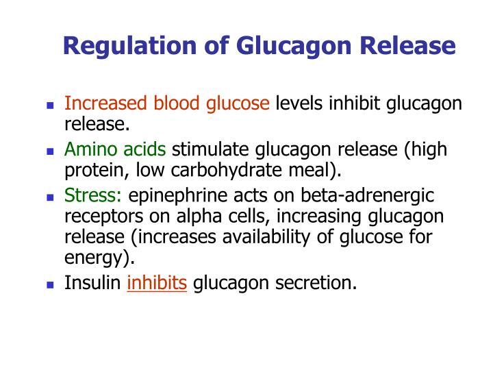 Regulation of Glucagon Release