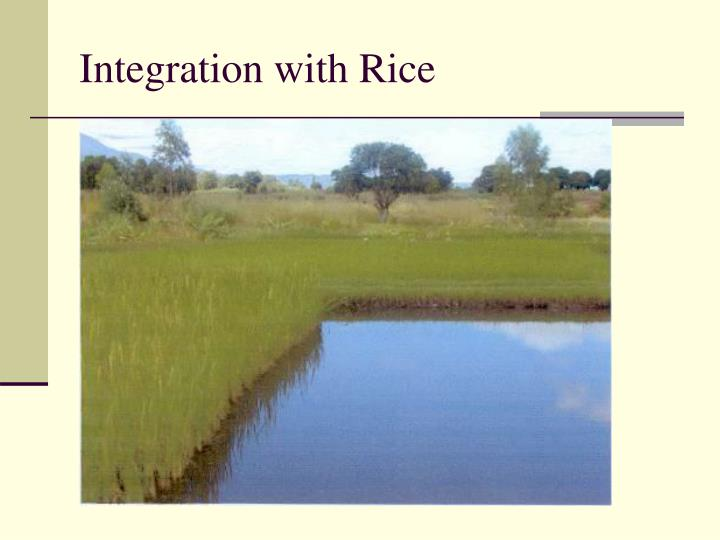Integration with Rice