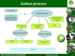 galloo process