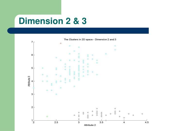 Dimension 2 & 3