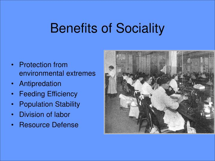 Benefits of Sociality