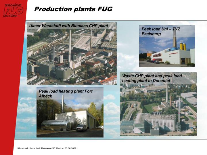 Ulmer Weststadt with Biomass CHP plant