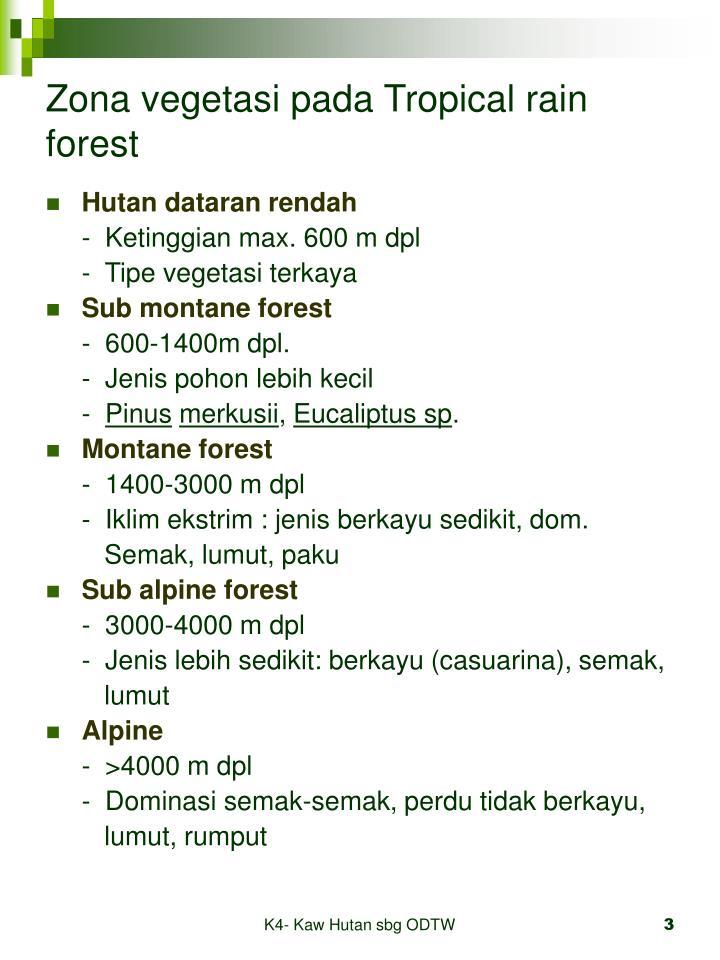 Zona vegetasi pada tropical rain forest