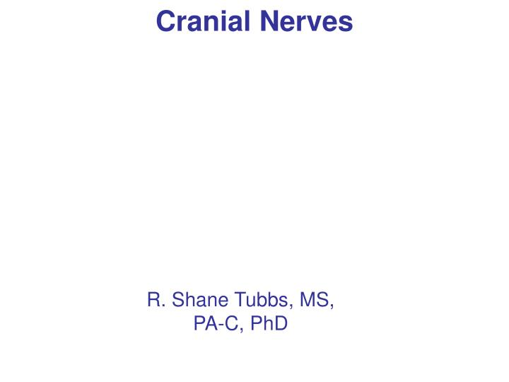 cranial nerves n.