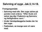 salvning af syge jak 5 14 182