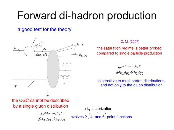 Forward di-hadron production