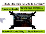 study structure for study partners