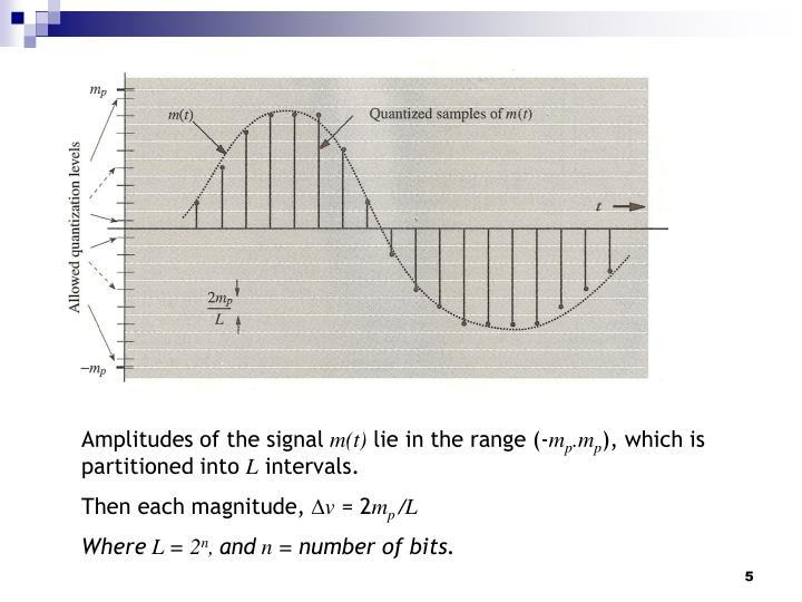 Amplitudes of the signal