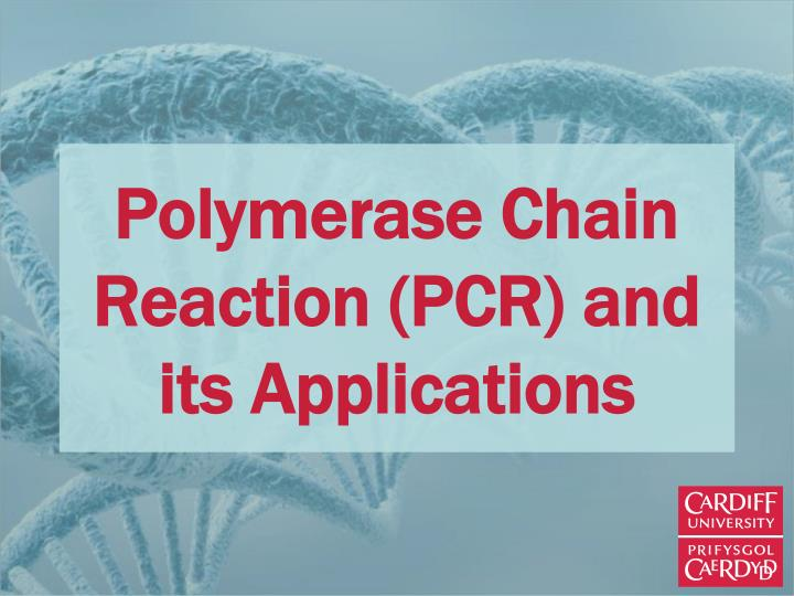 PPT - Polymerase Chain Reaction (PCR) and its Applications