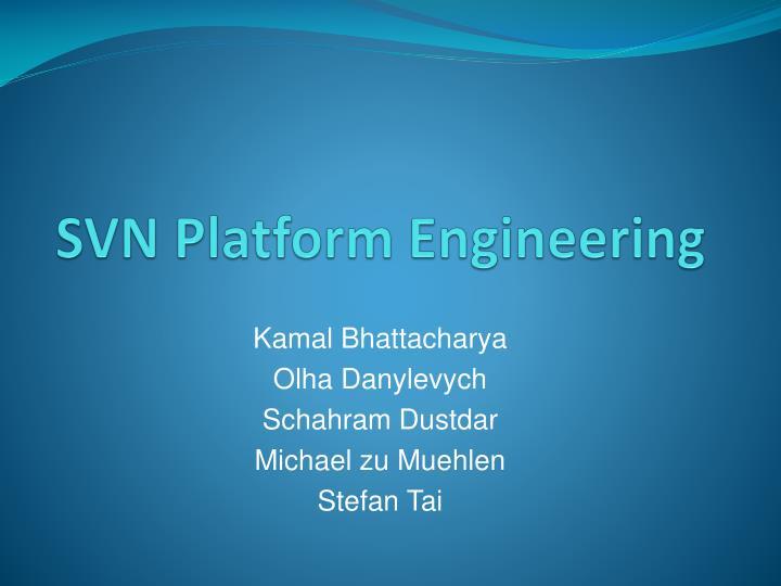 svn platform engineering n.