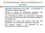 the study findings nature and challenges of the sector
