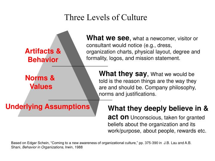 three levels of organization