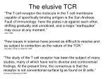 the elusive tcr