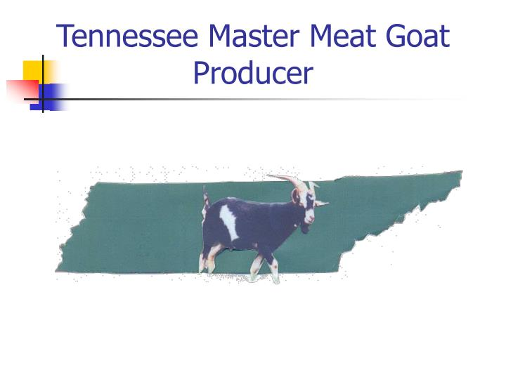 tennessee master meat goat producer n.
