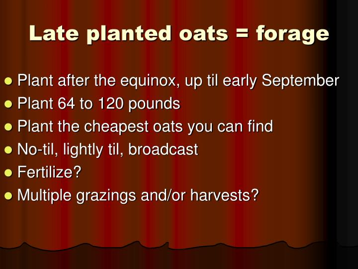Late planted oats = forage