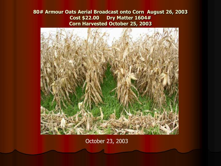 80# Armour Oats Aerial Broadcast onto Corn  August 26, 2003