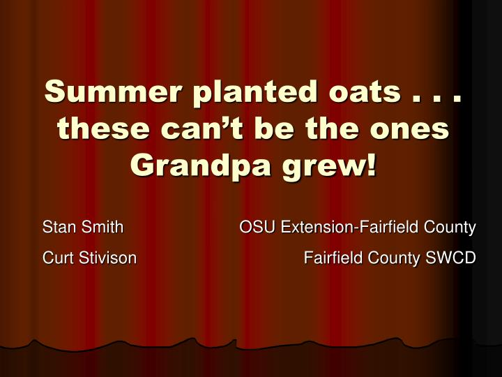 Summer planted oats these can t be the ones grandpa grew