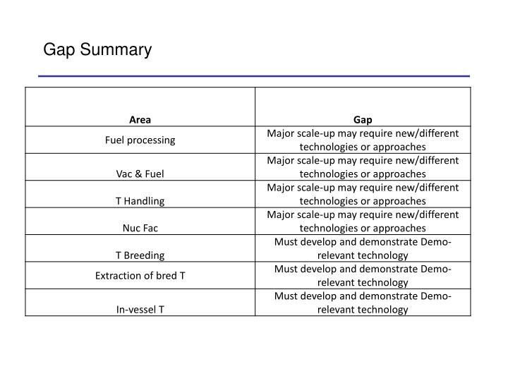 Gap Summary