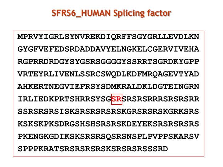 SFRS6_HUMAN Splicing factor