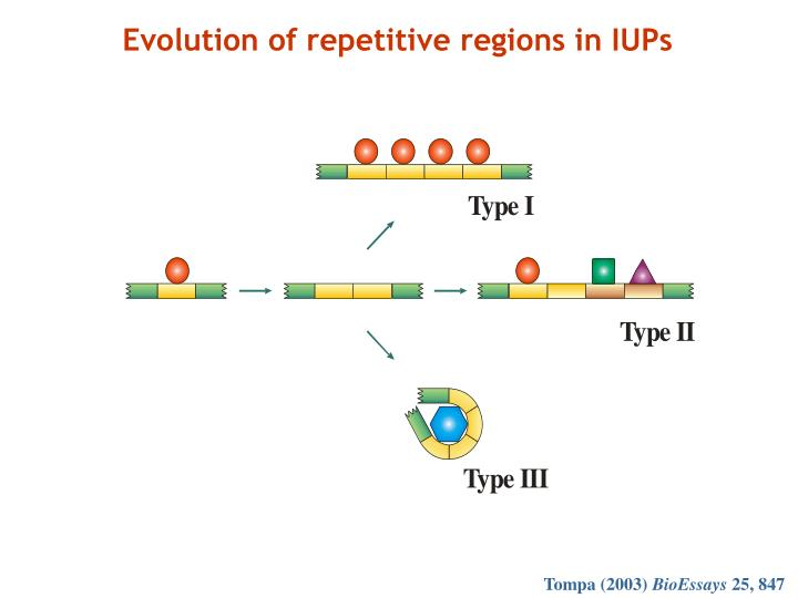 Evolution of repetitive regions in IUPs