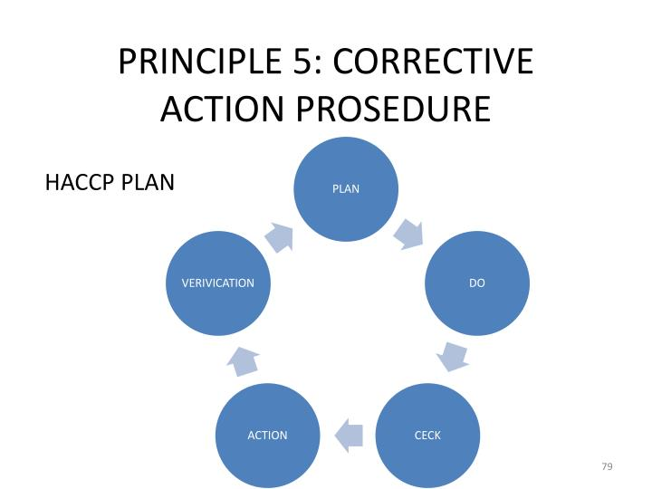 Principle 5 corrective action prosedure