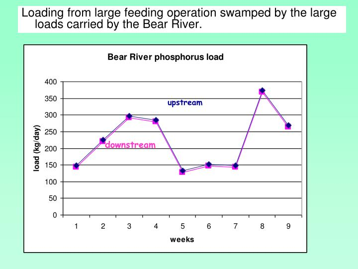 Loading from large feeding operation swamped by the large loads carried by the Bear River.