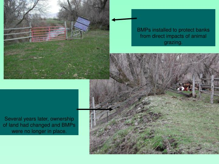 BMPs installed to protect banks from direct impacts of animal grazing.