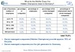 what do the middle class the hidden champions mean to germany