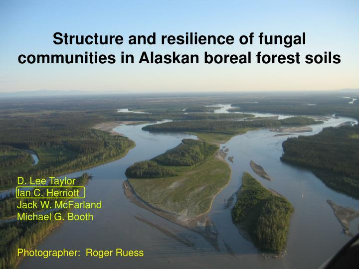Structure and resilience of fungal communities in Alaskan boreal forest soils