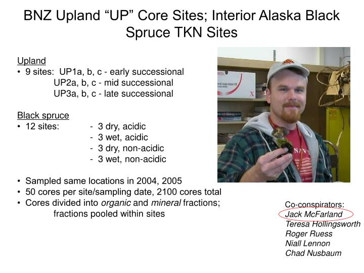 "BNZ Upland ""UP"" Core Sites; Interior Alaska Black Spruce TKN Sites"