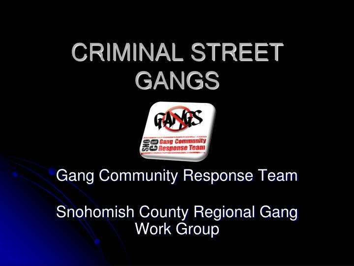 criminal street gangs n.