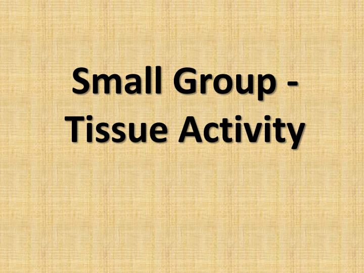 Small Group -Tissue Activity
