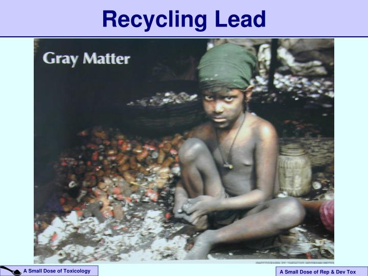 Recycling Lead