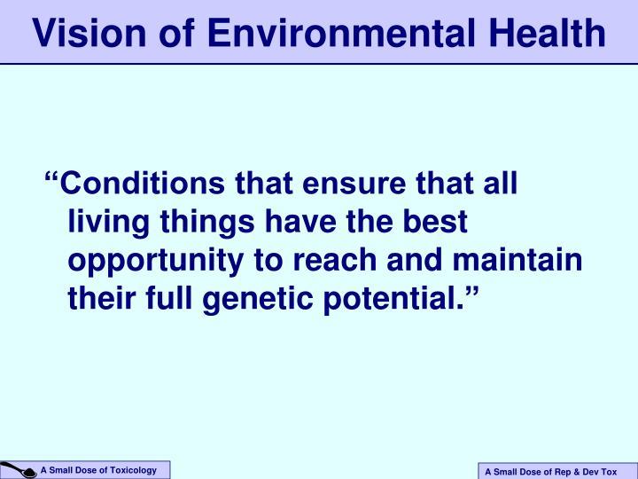 Vision of Environmental Health