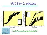 pecb in c elegans