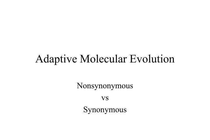 adaptive molecular evolution n.