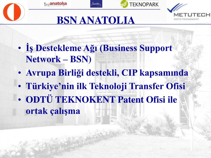 BSN ANATOLIA