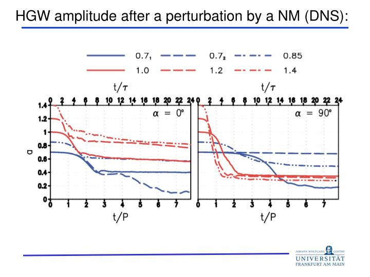 HGW amplitude after a perturbation by a NM (DNS):