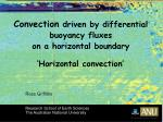 convection driven by differential buoyancy fluxes on a horizontal boundary