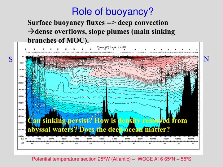 Role of buoyancy