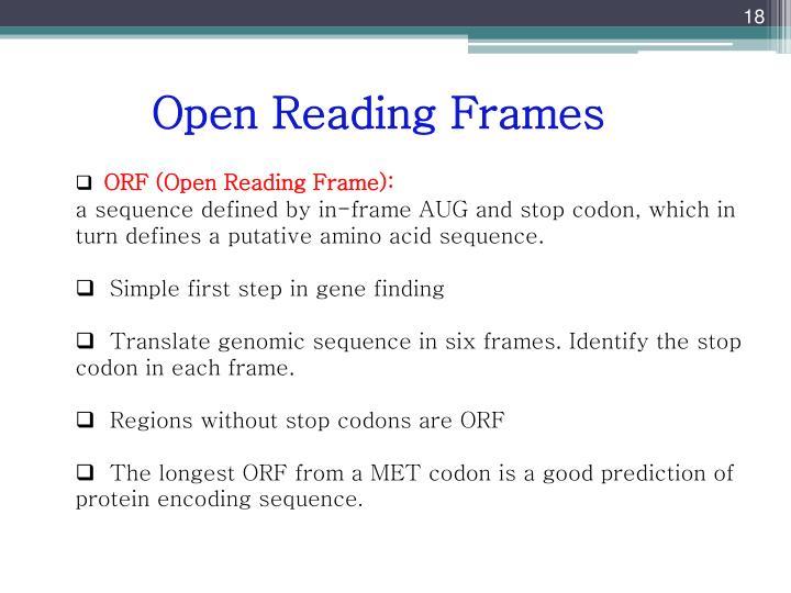 PPT - Gene Prediction PowerPoint Presentation - ID:3384560