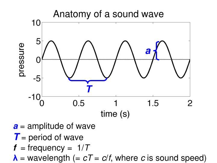 Anatomy of a sound wave