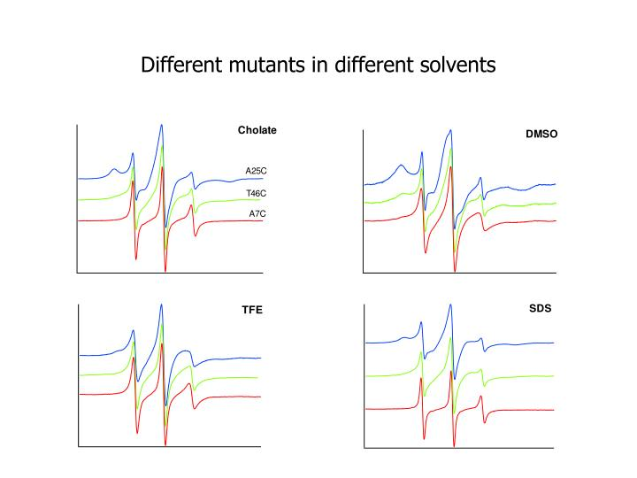 Different mutants in different solvents