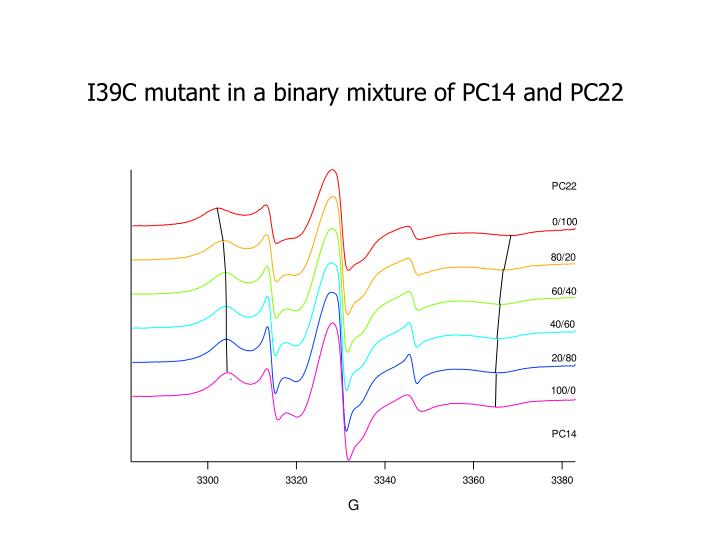 I39C mutant in a binary mixture of PC14 and PC22